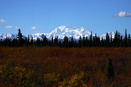 National Park Service Digital Image  AK2006-0346.JPG